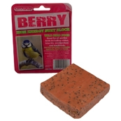 Suet to Go Wild Berry Suet Block