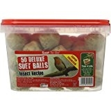 Suet to Go Insect Suet Ball Tub 50