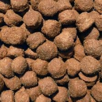Lamb & Rice Large Kibble Working Dog